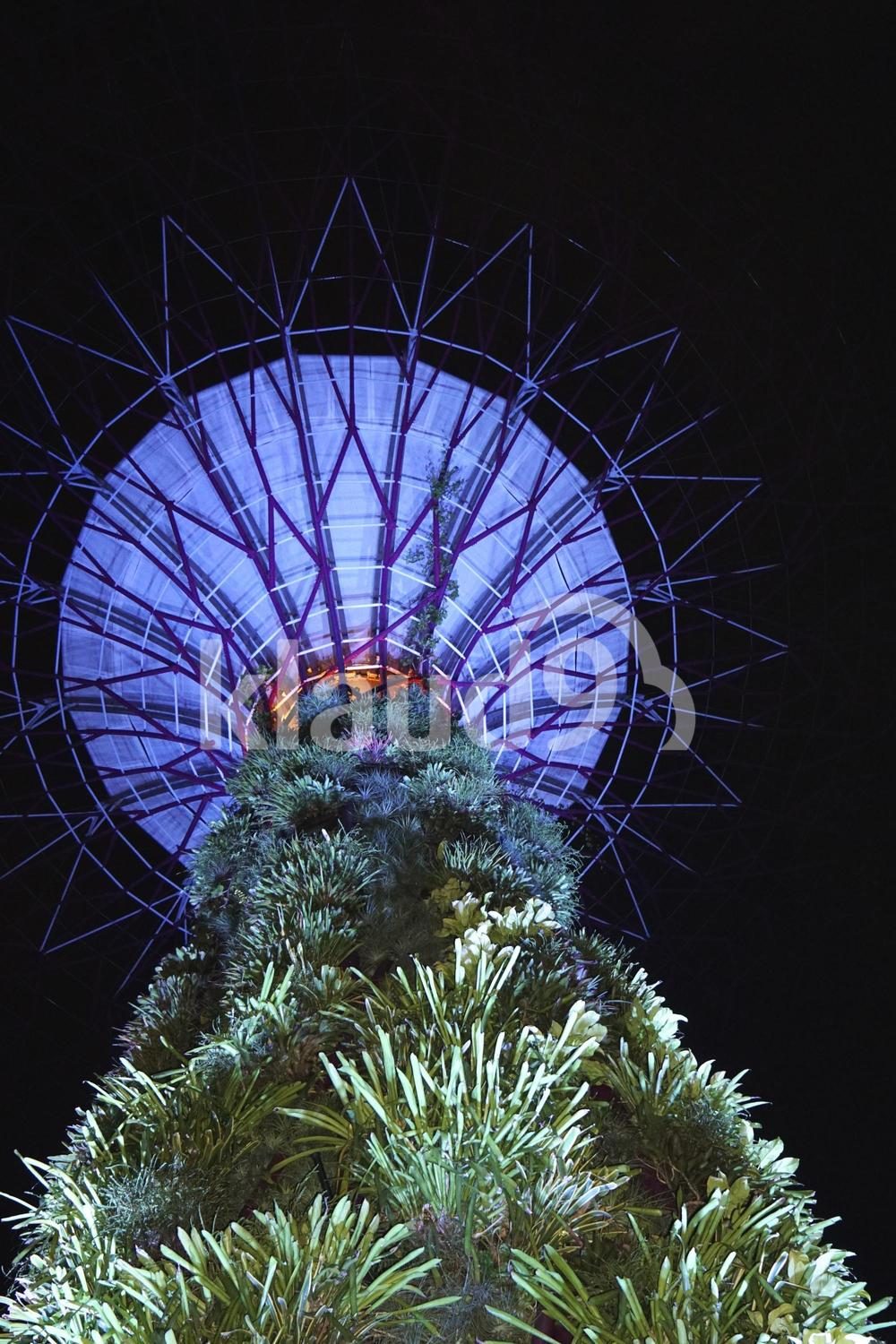 Gardens by the bay point of view supertree