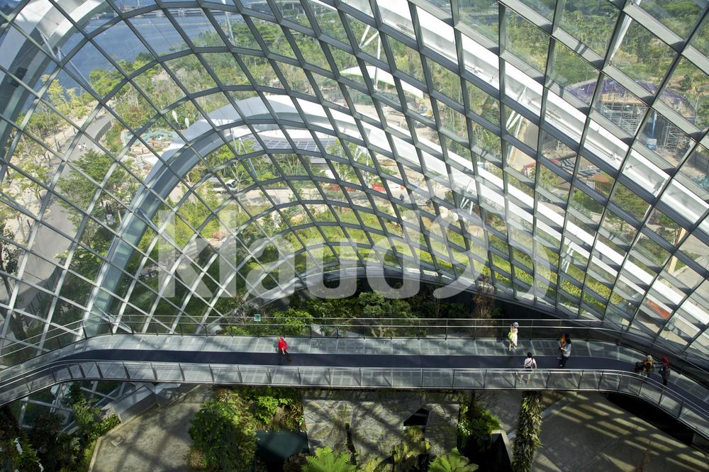 Top floor of flower dome Gardens by the Bay