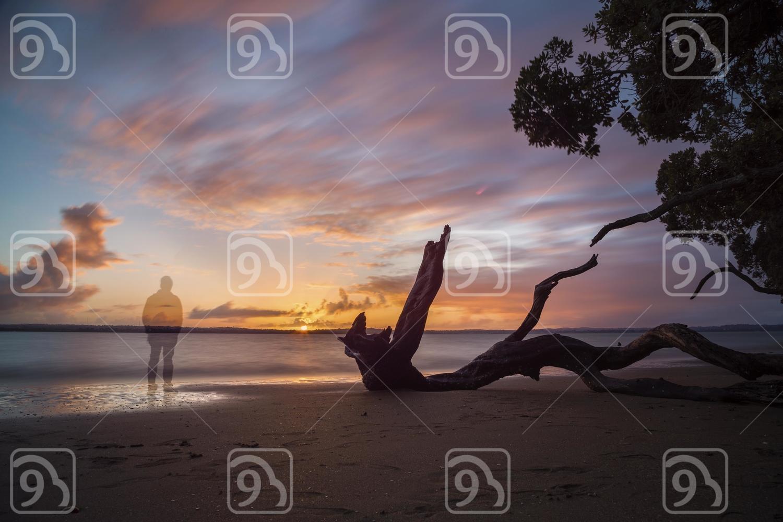 Sunset at a Auckland beach