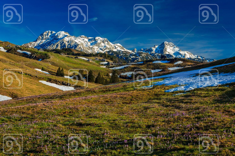 Mt. Velika planina