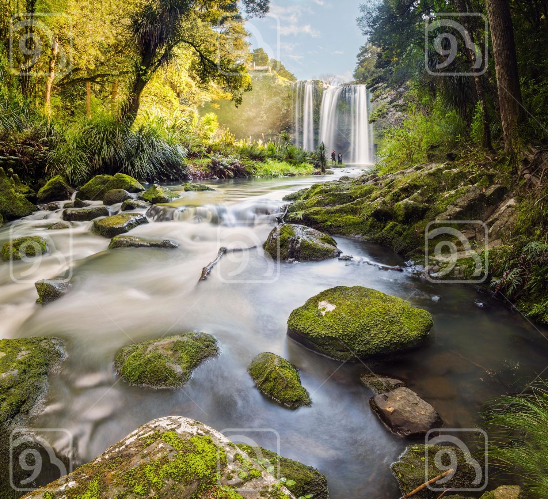 Whangarei Falls, New Zealand