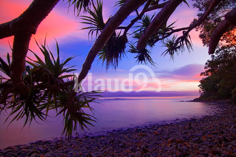 Little Cove dawn