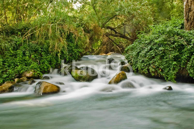 Dan River Israel