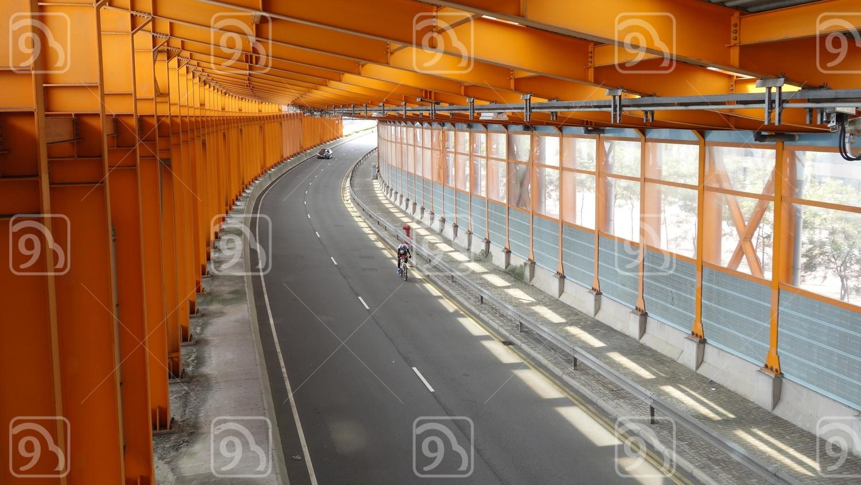 Hong Kong Race