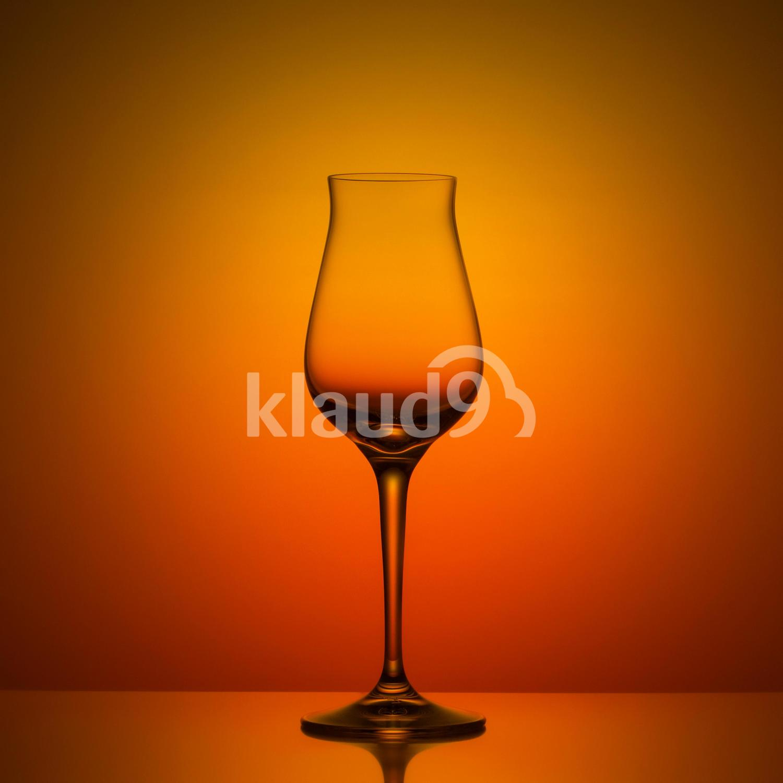 Still life study of Wine Glass