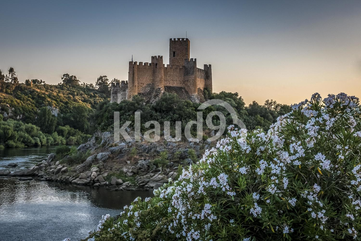 Castle and flowers