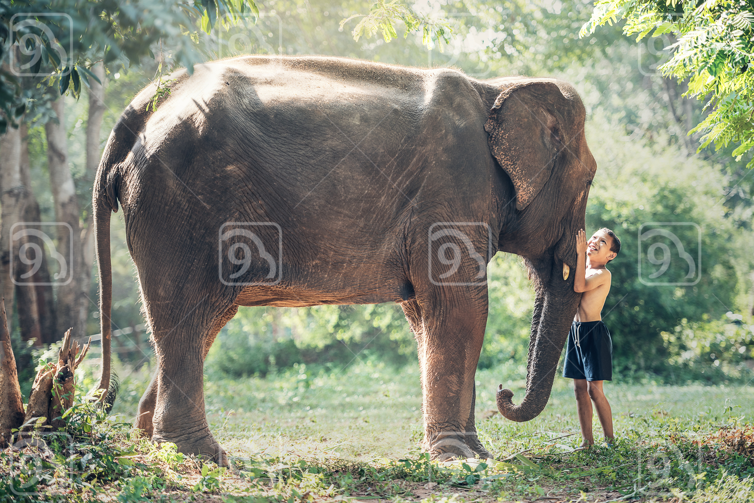 Children with elephant