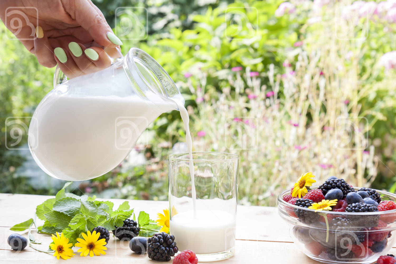 Pouring milk in the glass on the table with summer berries