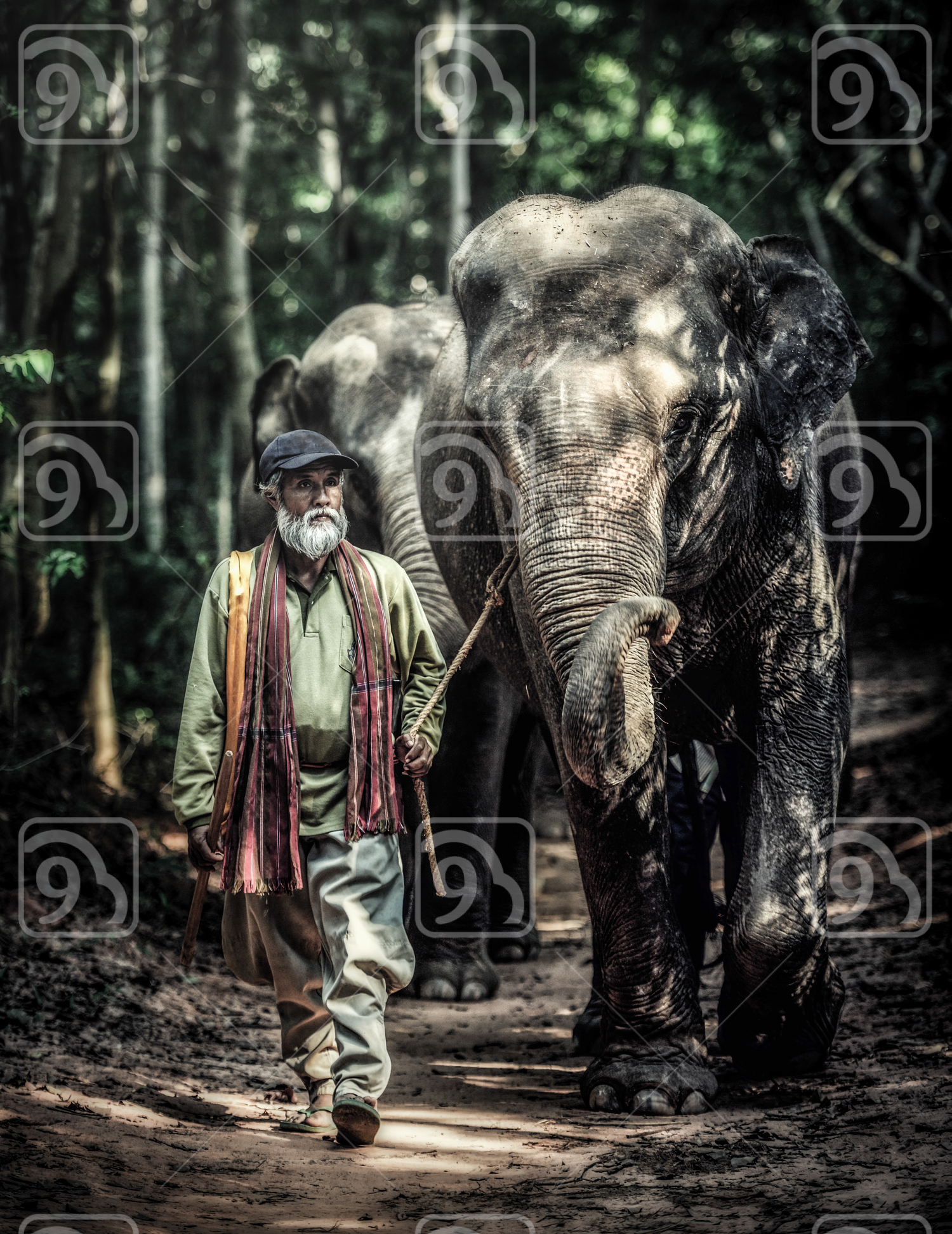 A mahout walking with his elephant to go back home