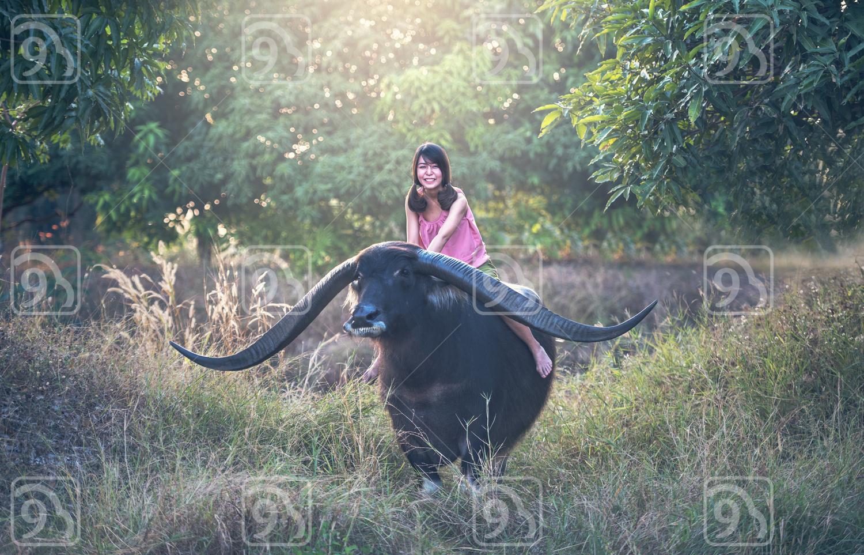 Happy Asian woman farmer with a buffalo