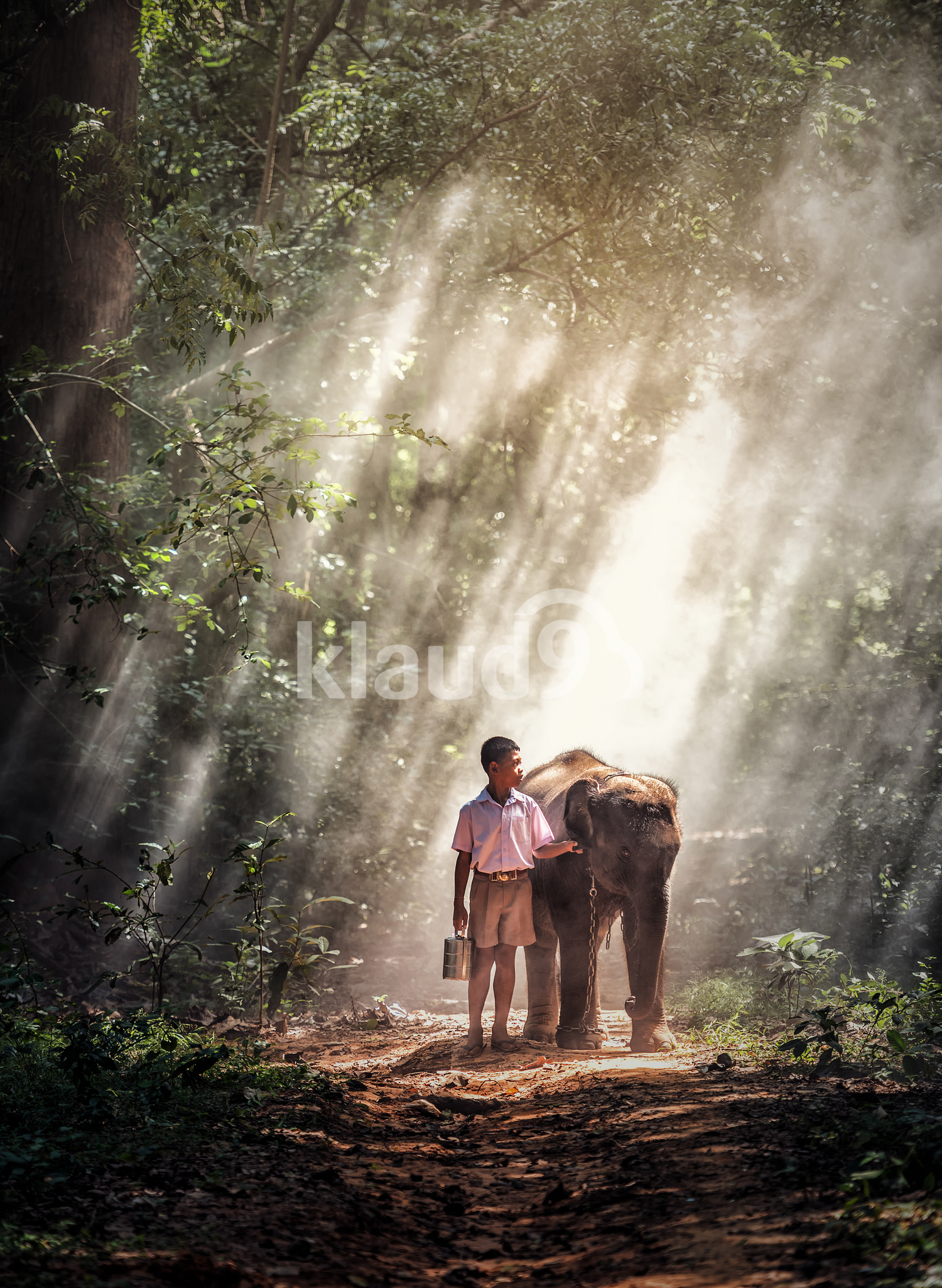 Boy with elephant in forest