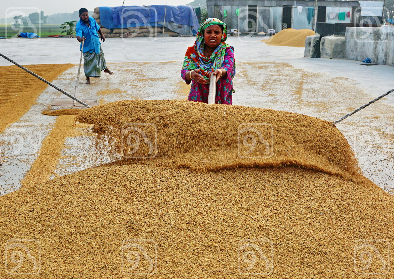 Rice processing in Dhaka
