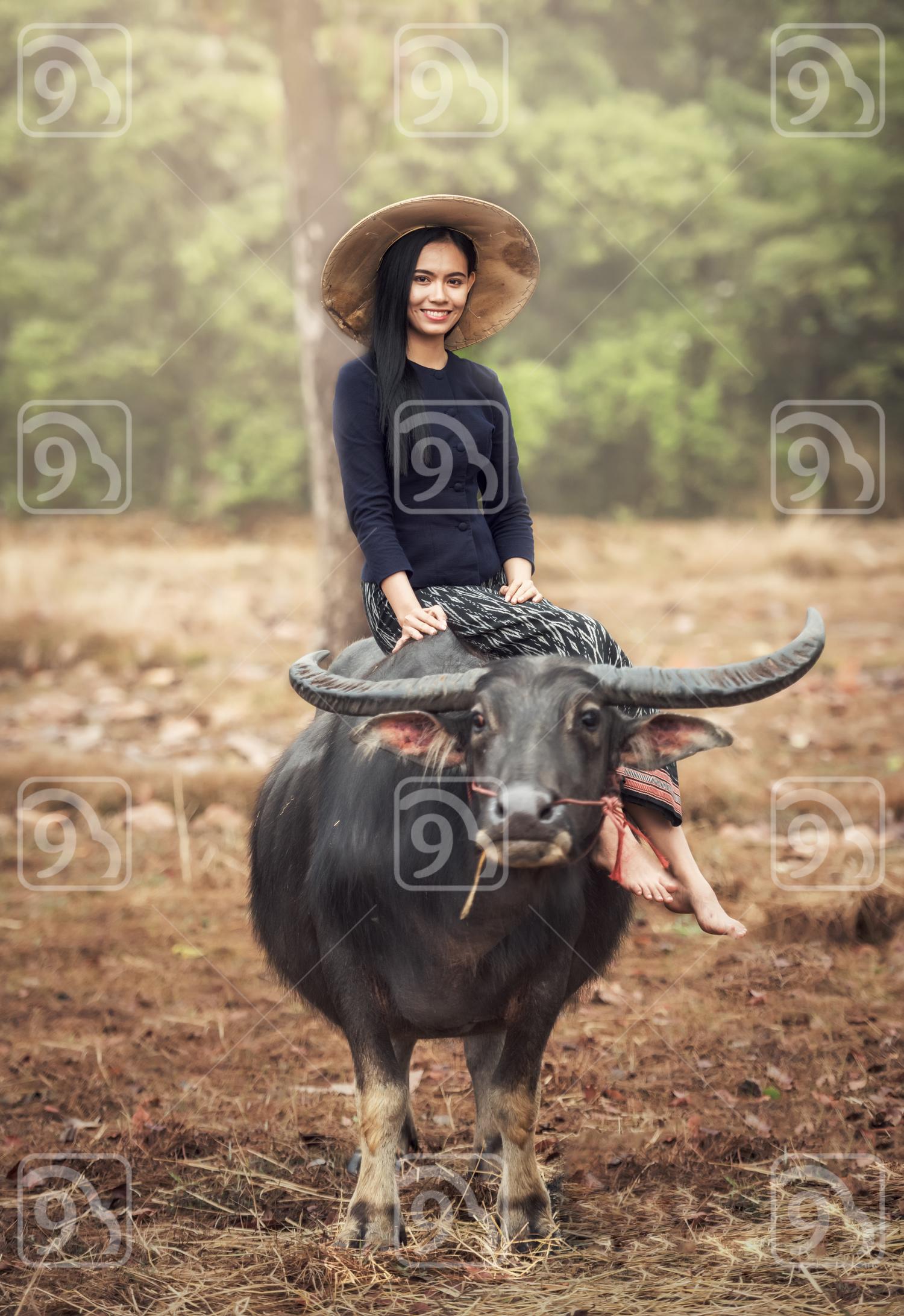 Asian woman (Thai) farmer with a buffalo