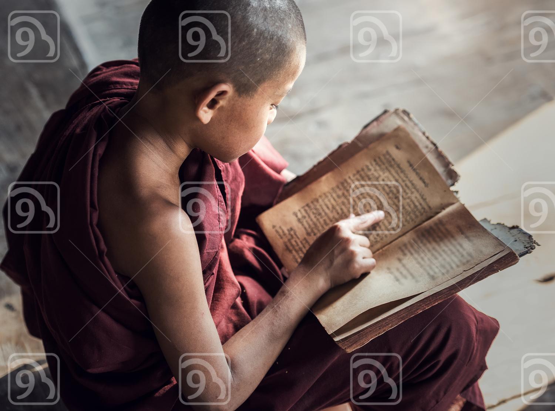 Young Buddhist novice monk reading