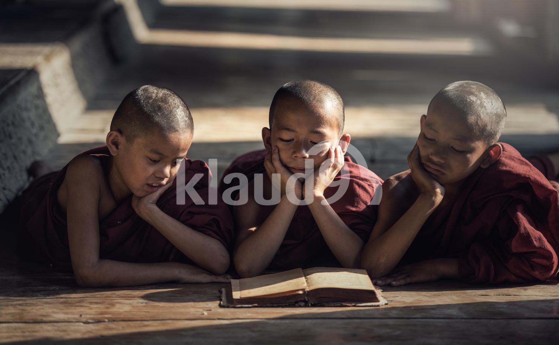 Novice monk reading book,in monastery