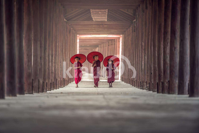 Buddhist novice walking in temple