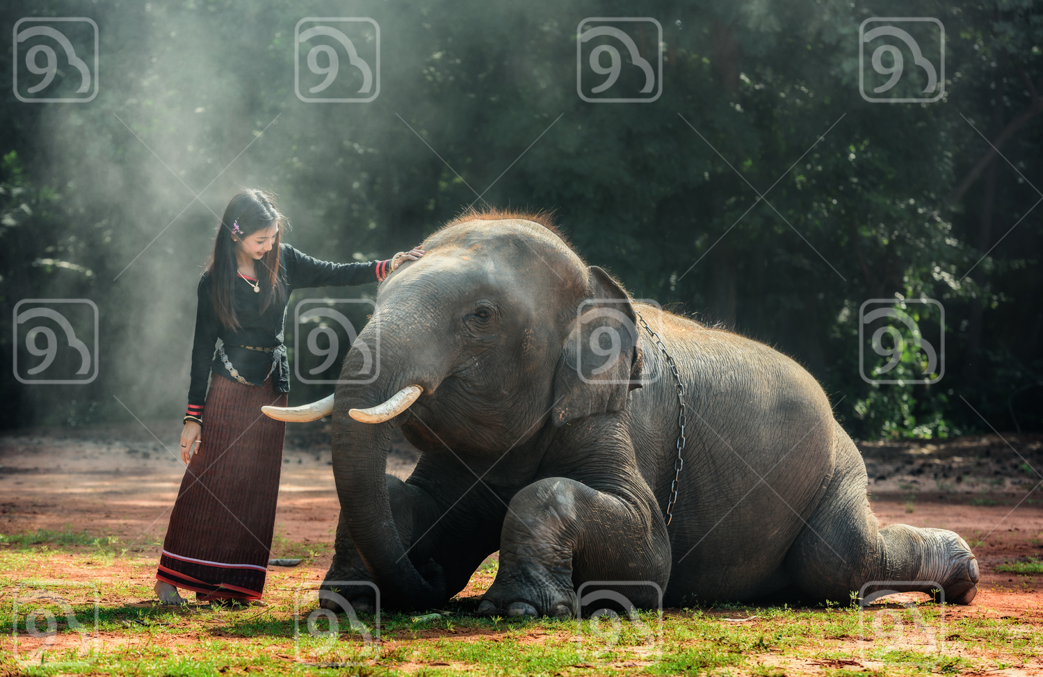 Traditional Thai lady with Elephant