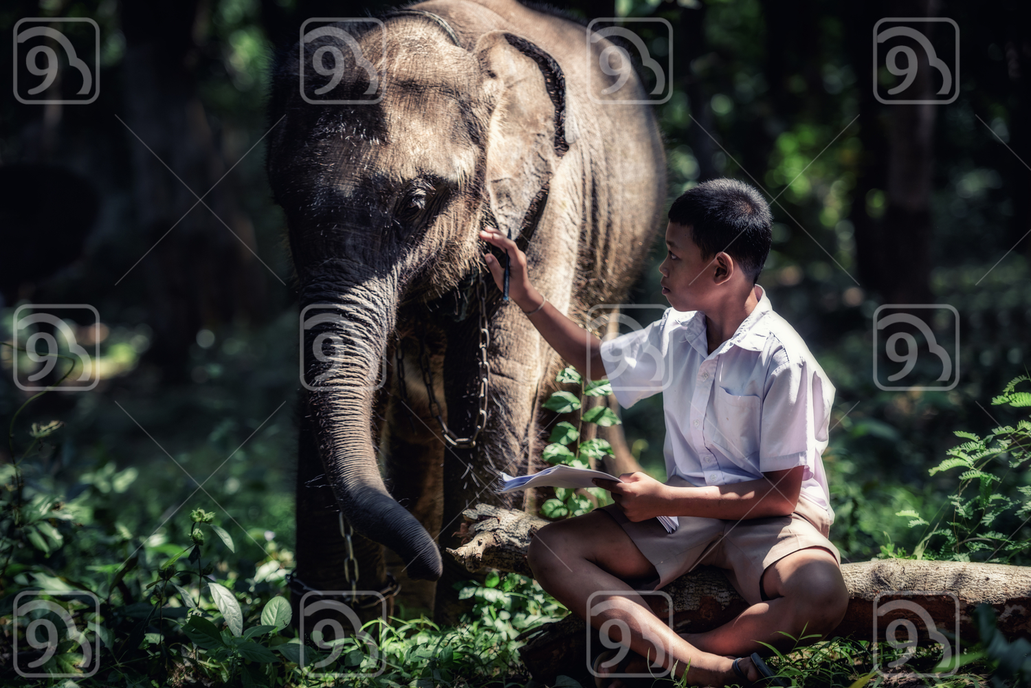 Thai Student in uniform with young elephant