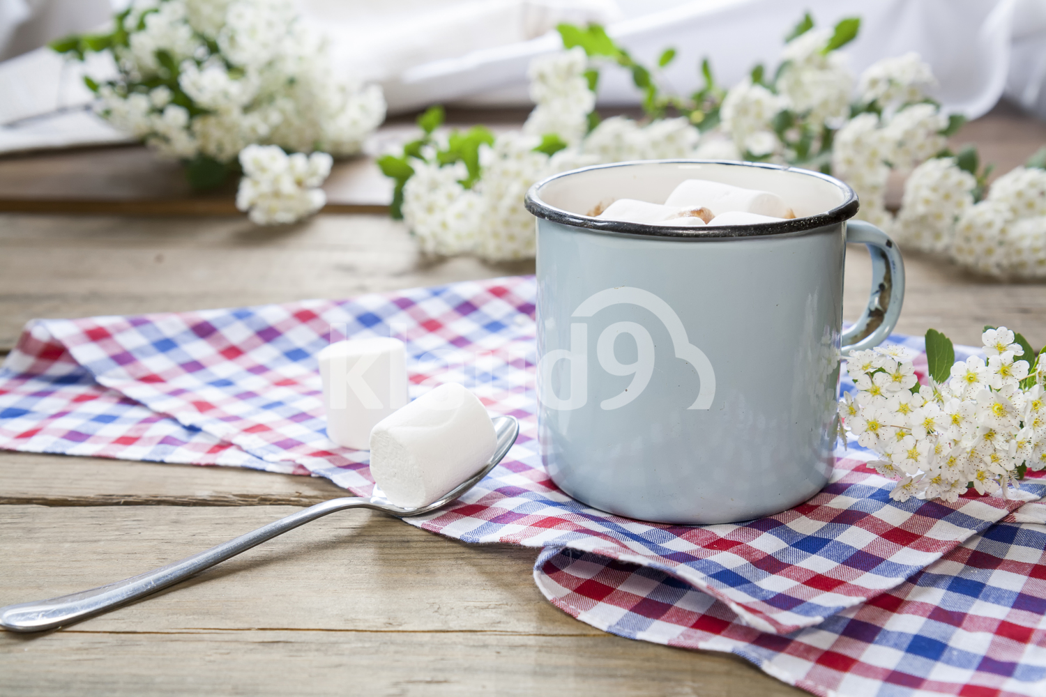 Hot cocoa with marshmallows in blue cup