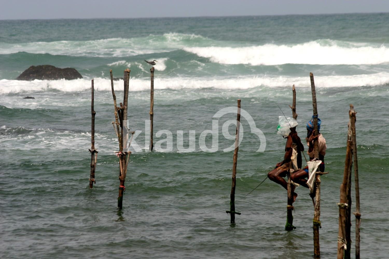 Stilt fishing in Weligama, Sri Lanka