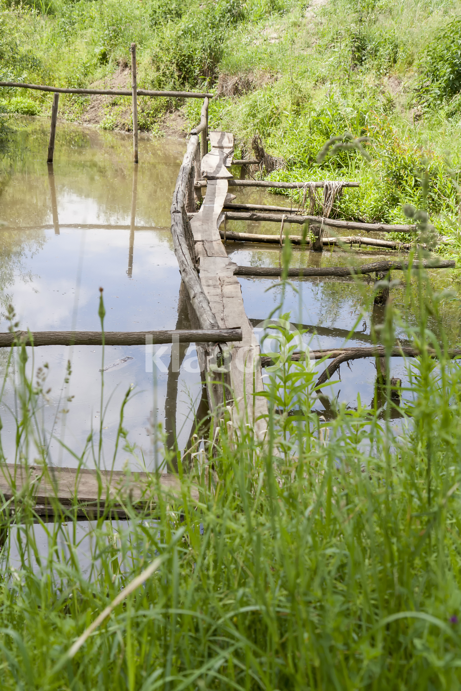 Old wooden bridge over the lake overgrown with grass