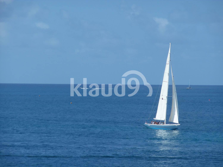 Blue Sailing