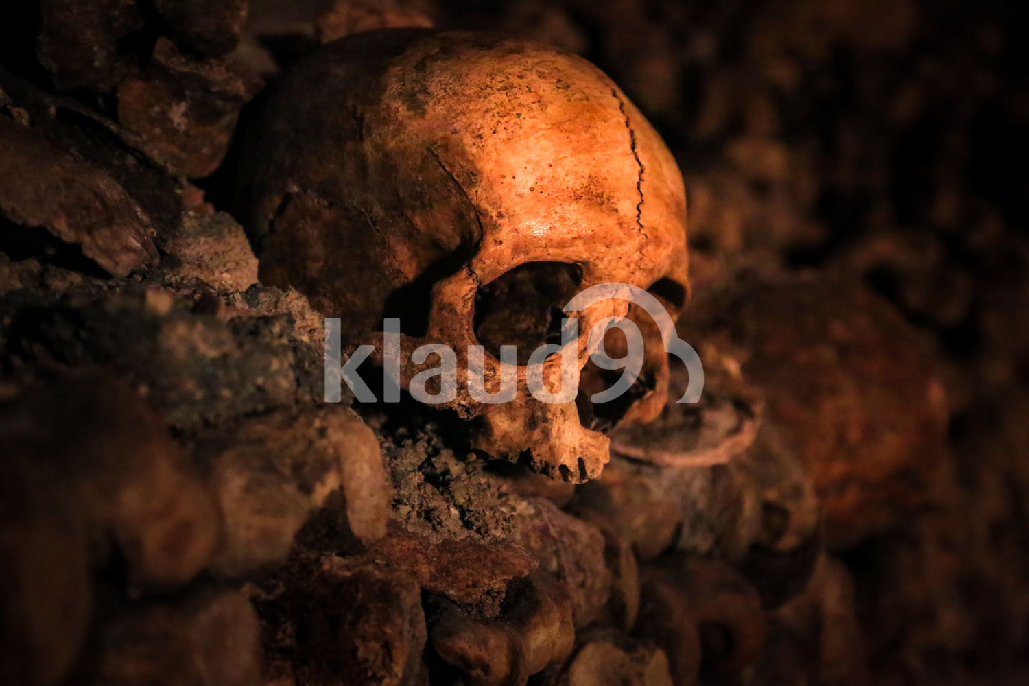 Skull in the Catacombs of Paris