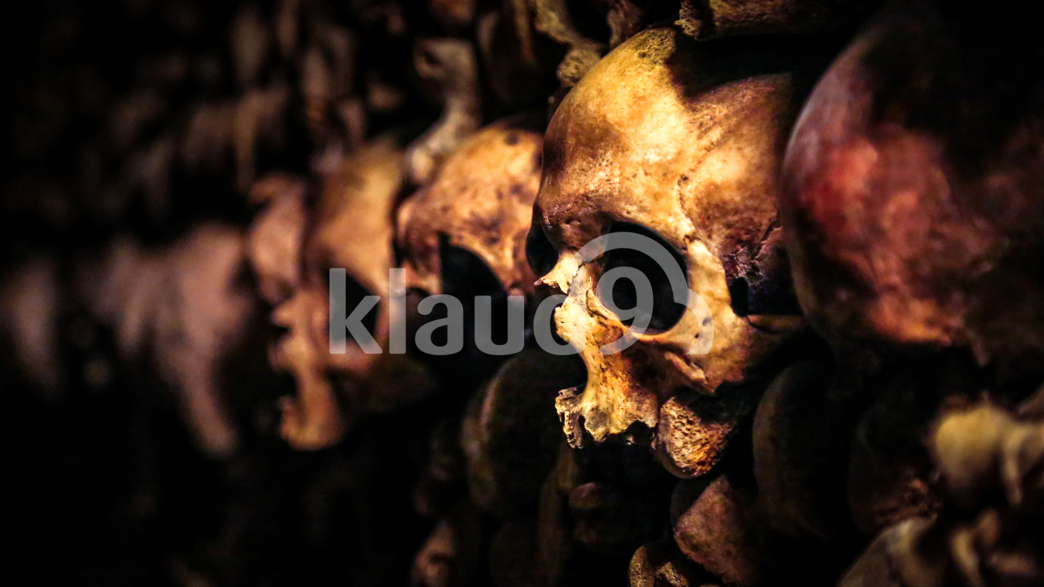 Skulls in the Catacombs of Paris