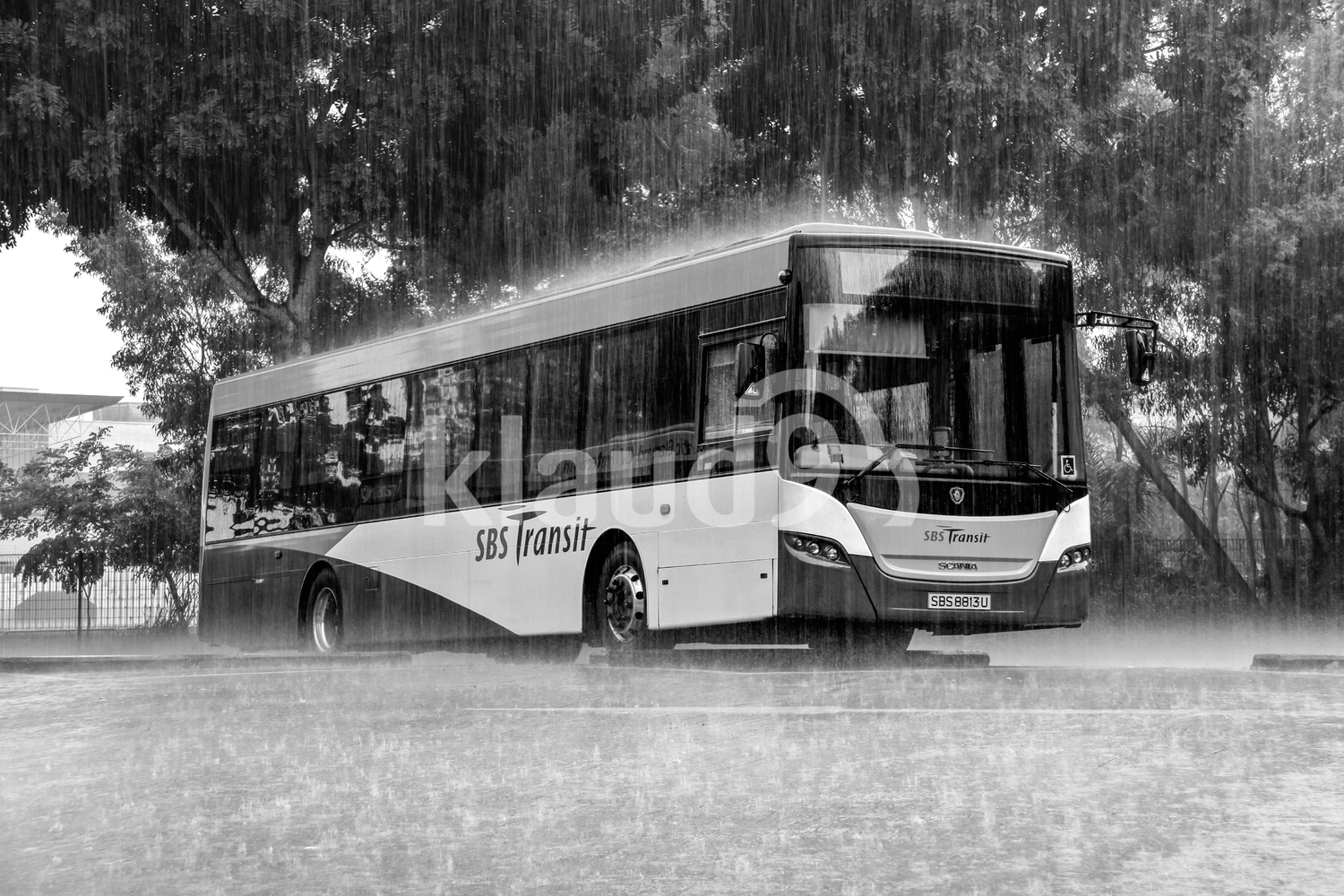 Bus in the rain