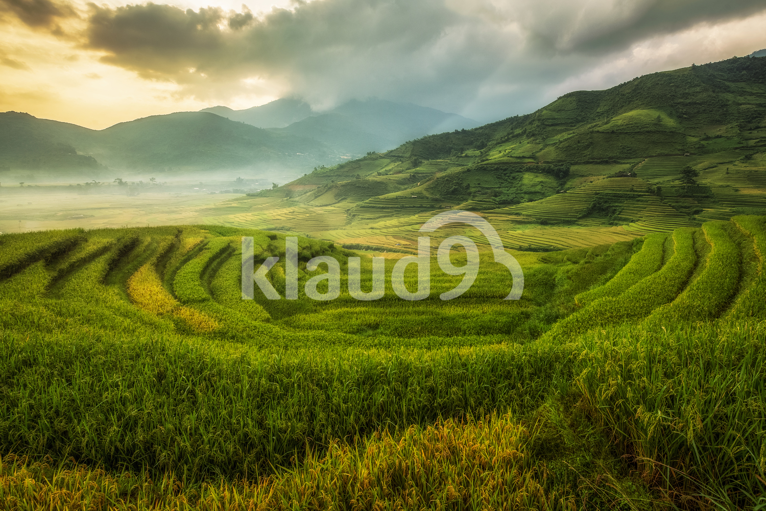 Beautiful landscape of Rice fields on terraces of Mu Cang Chai, Vietnam