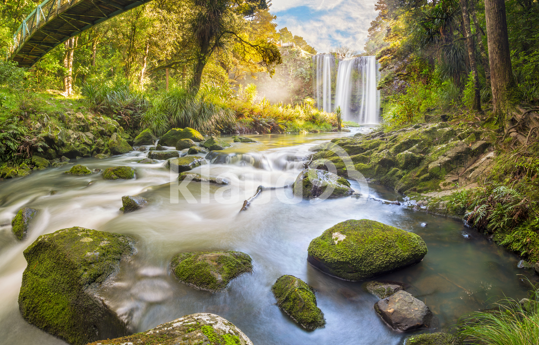 Whangeria Falls Northland New Zealand