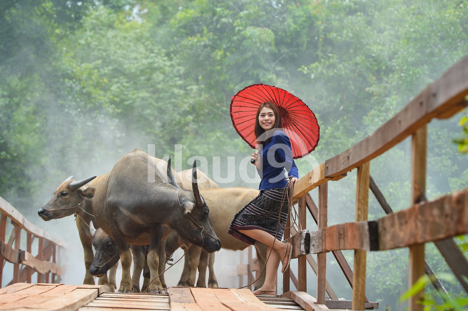 Portrait of Thai woman with a red umbrella and buffalos