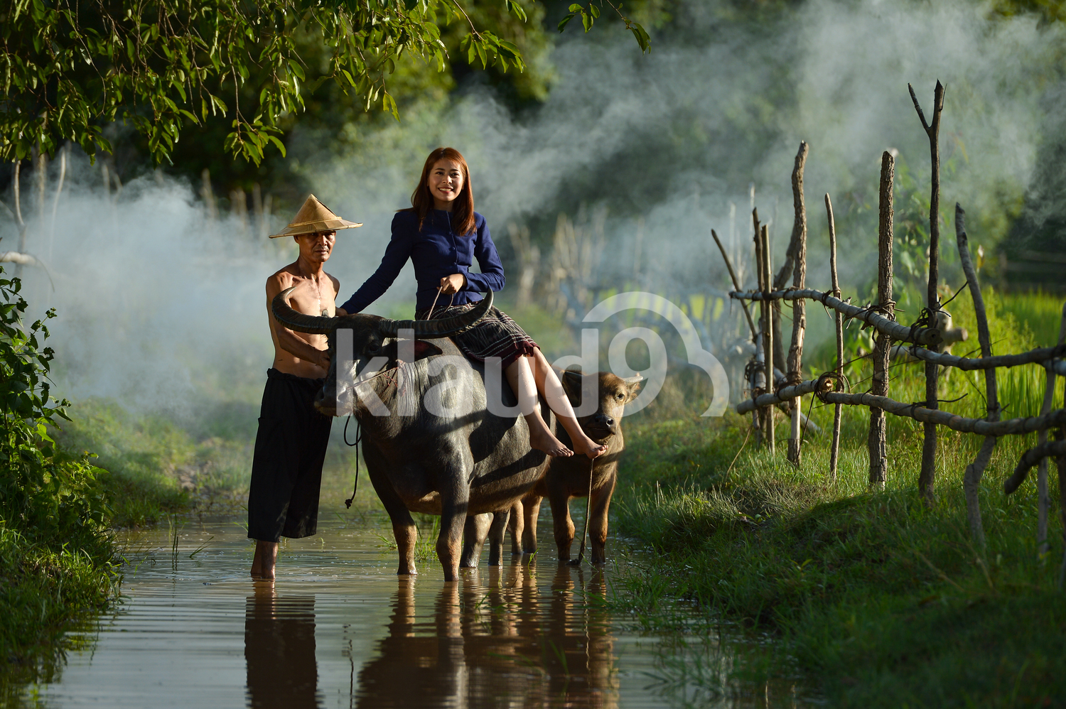 Farmers and buffalo in Thailand