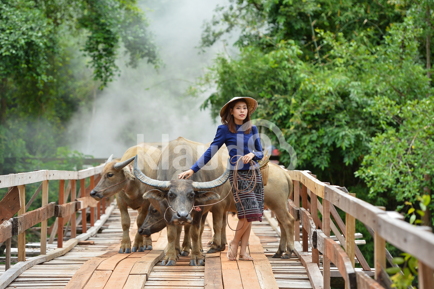 Portrait of Thai villager with her Oxes