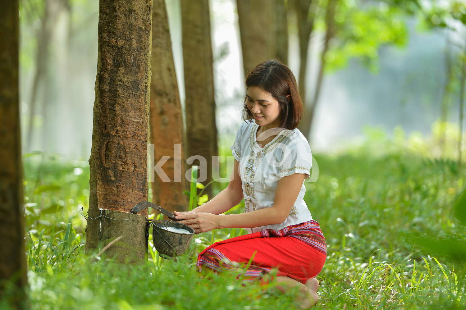 Young female rubber tapper in Thailand