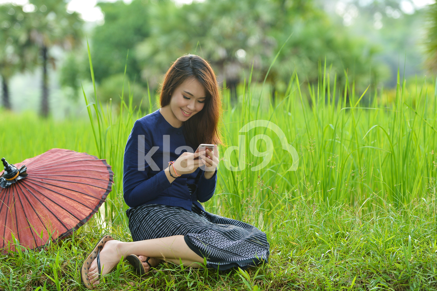 Thai woman texting in the paddy fields