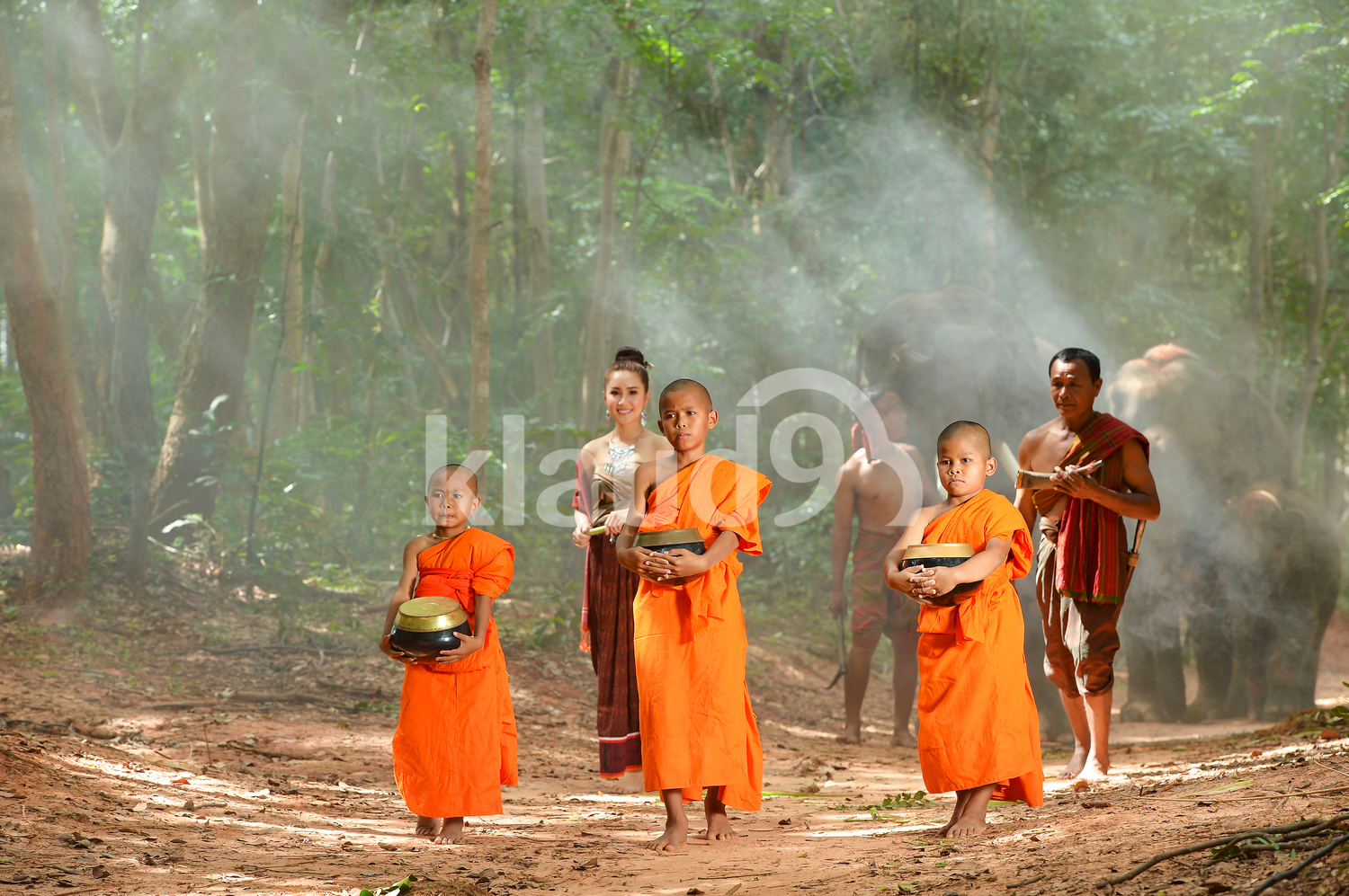 Elephant and Monks ,Surin Thailand