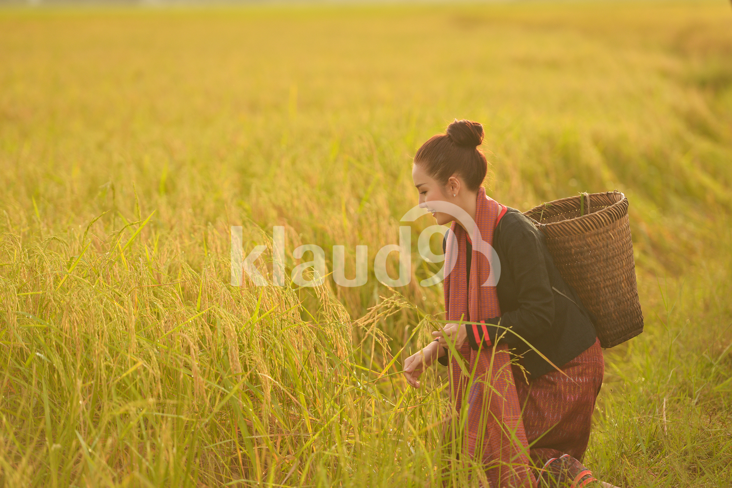 Beautiful Thai  woman working happily in the fields