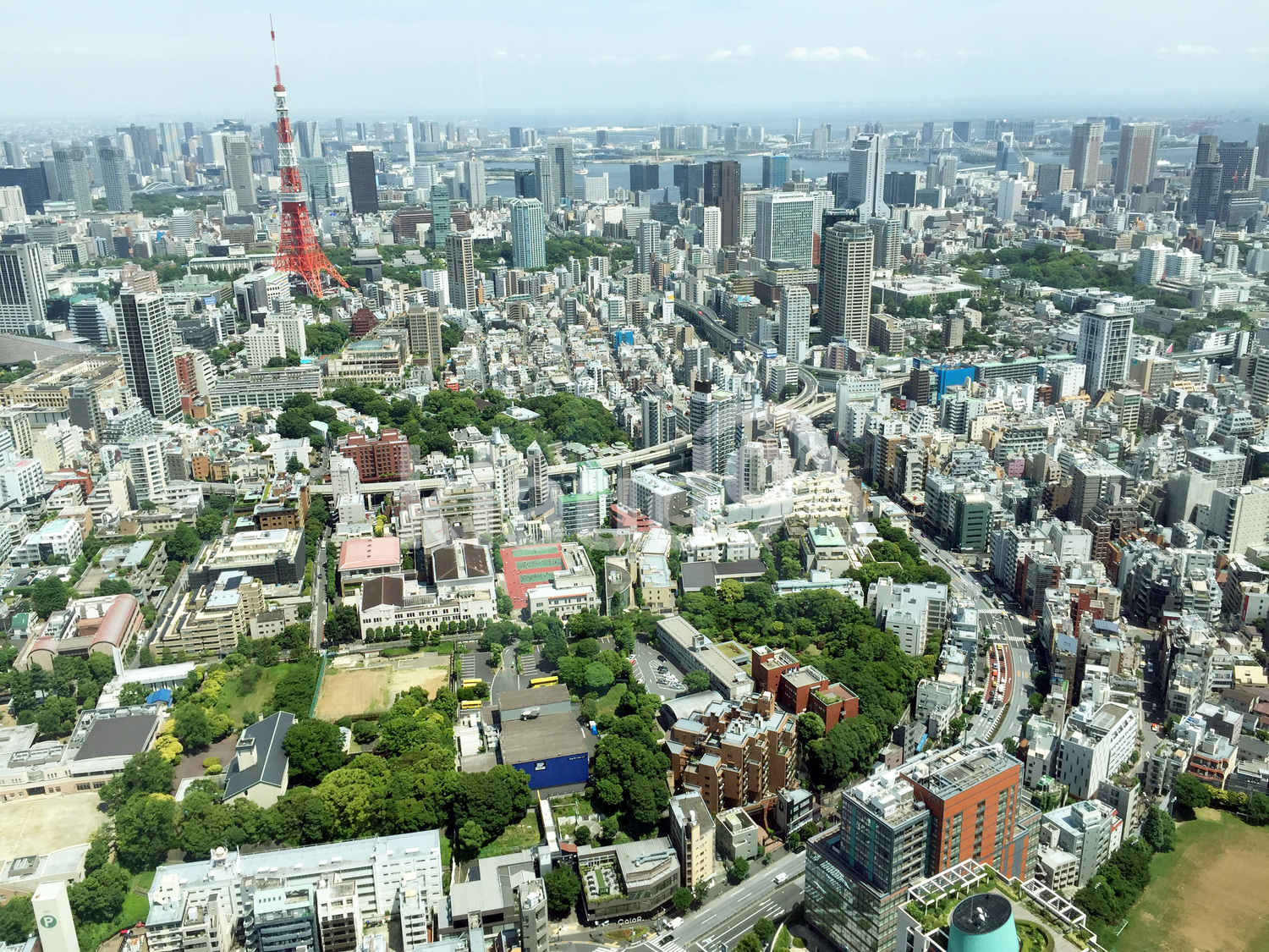Tokyo from Observatory