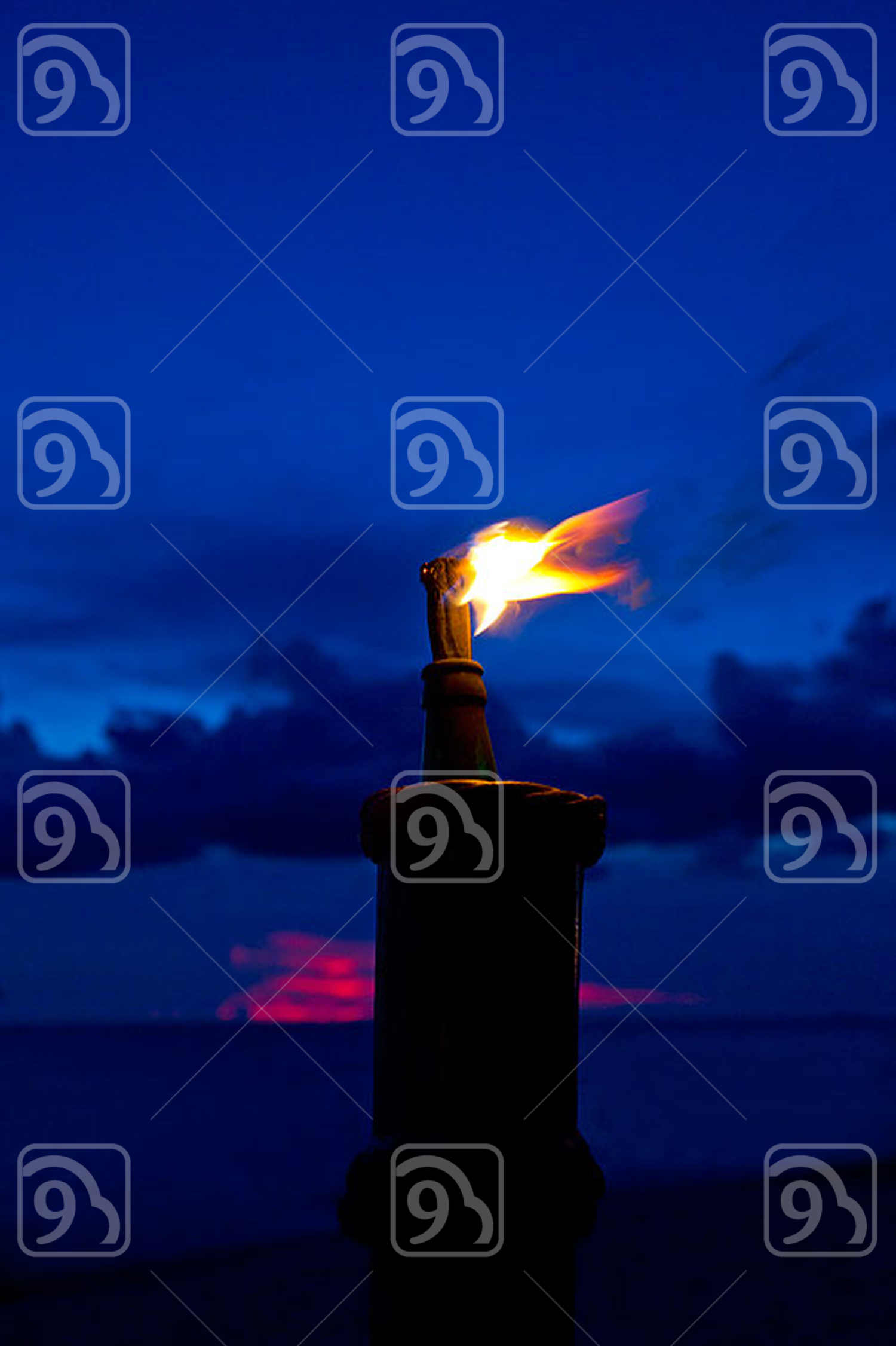 Firebrand in night