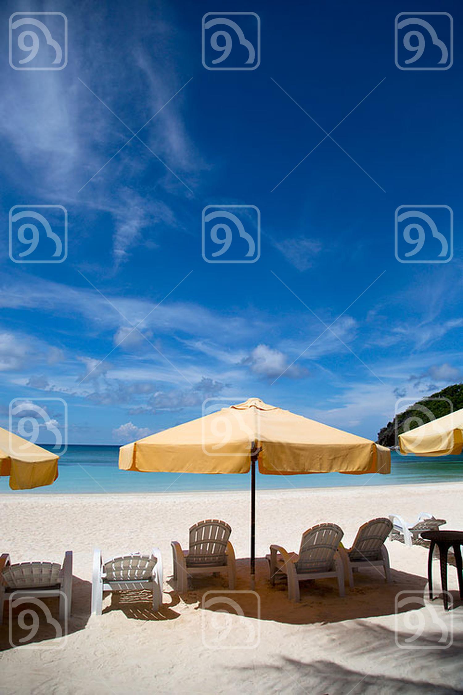 Beach chair and sunshade