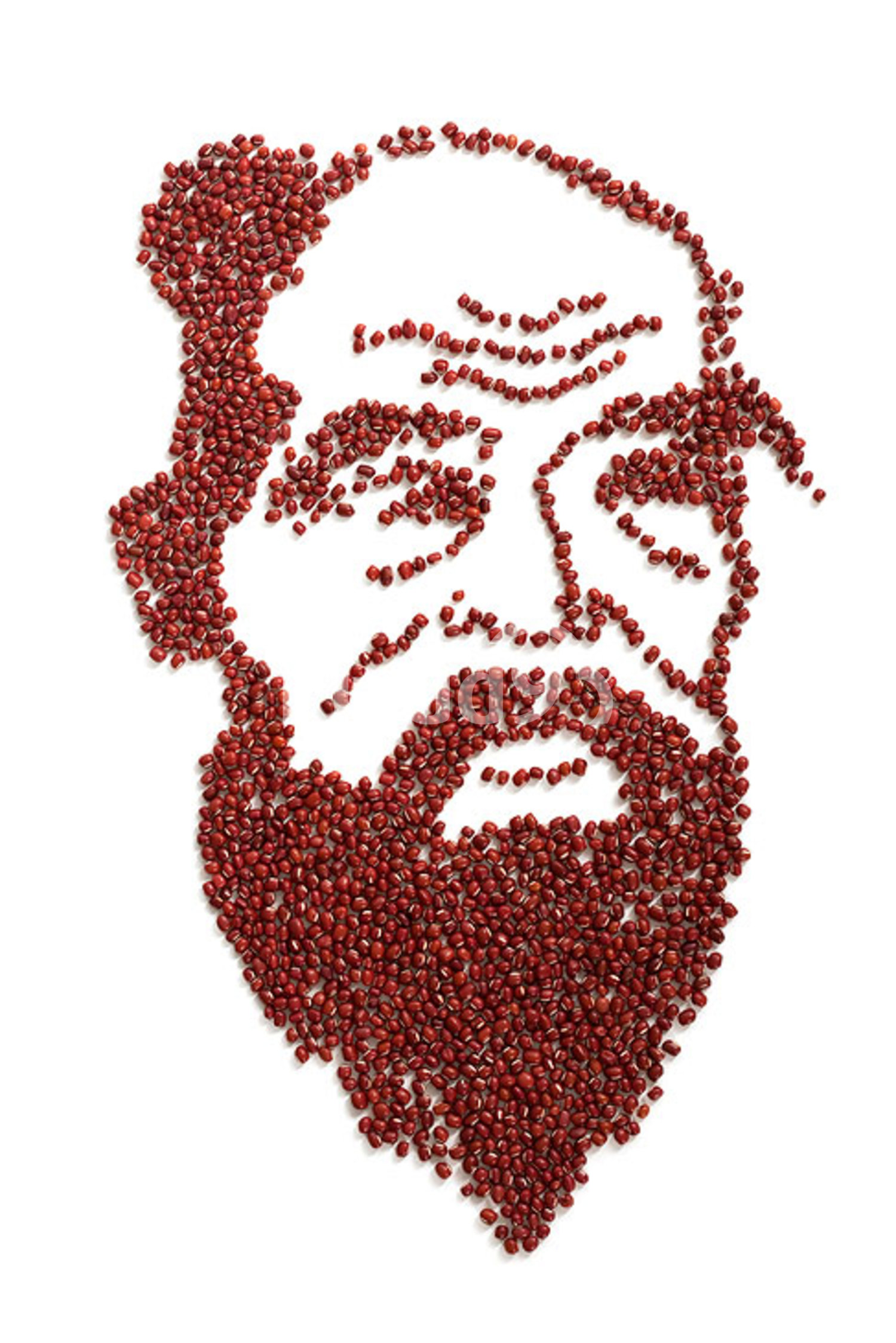 Portrait of Confucius made of red beans