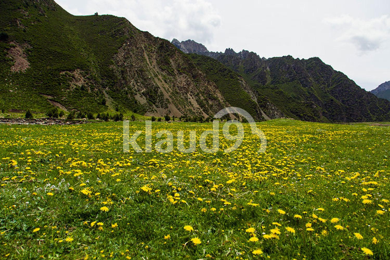 Mountain and prairie in Gansu province, China