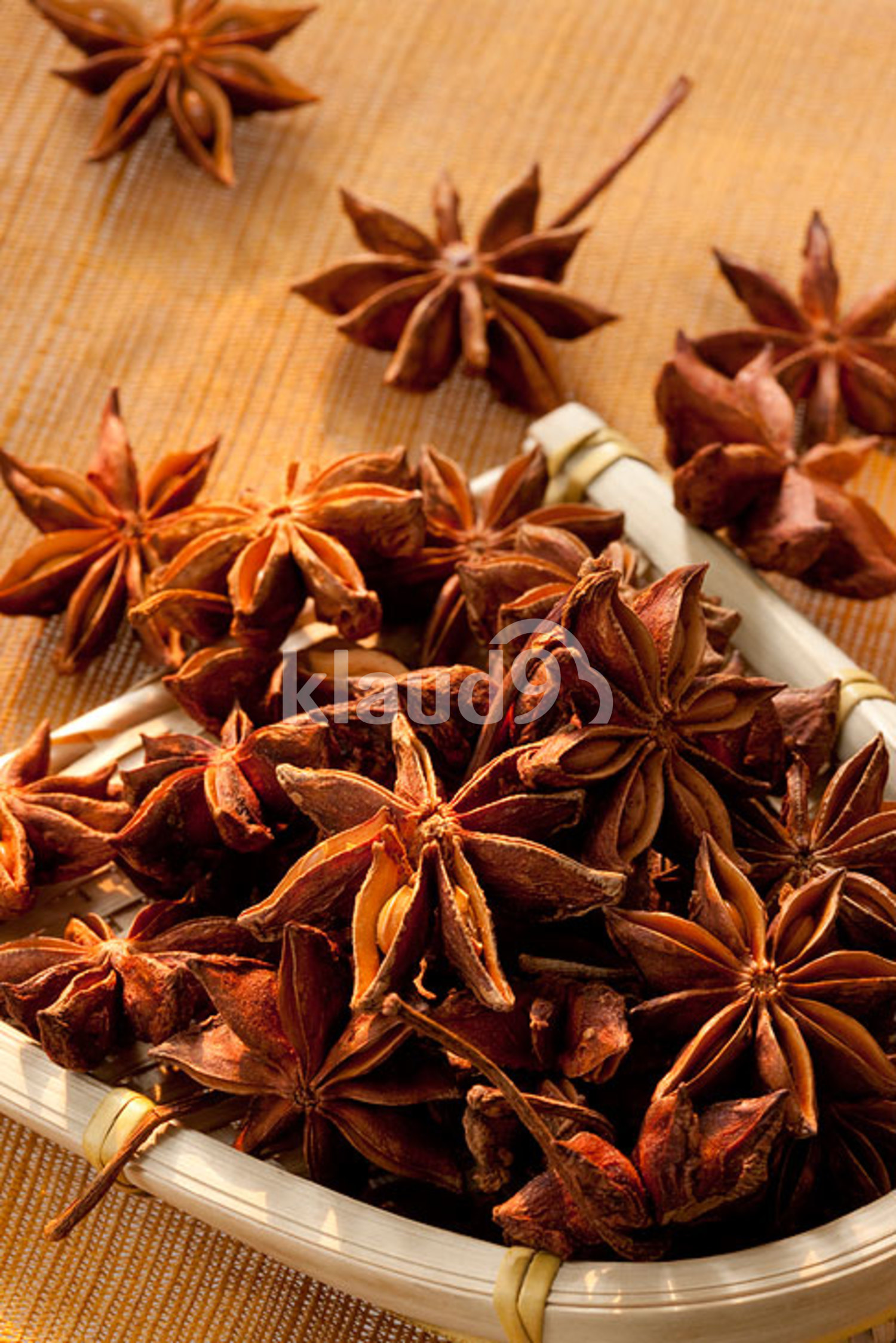 Close-up of Star Anise