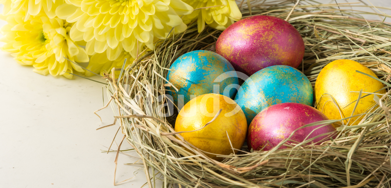 Easter eggs in a straw nest, Easter bunny cookies and flowers