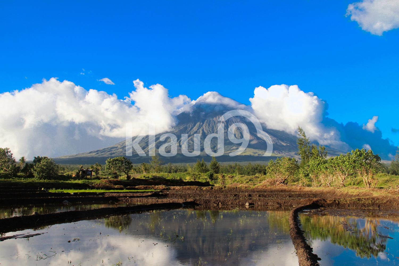 Shy Mt. Mayon