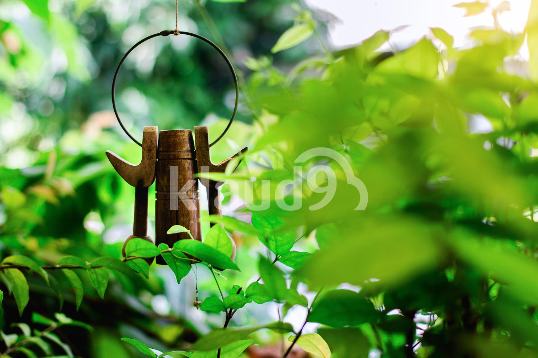 Garden's Decoration