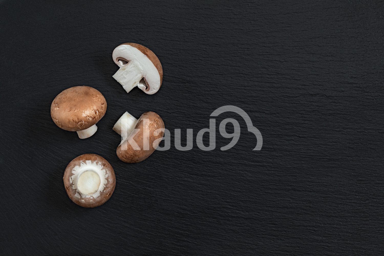 Fresh raw champignon with a brown cap on dark background.
