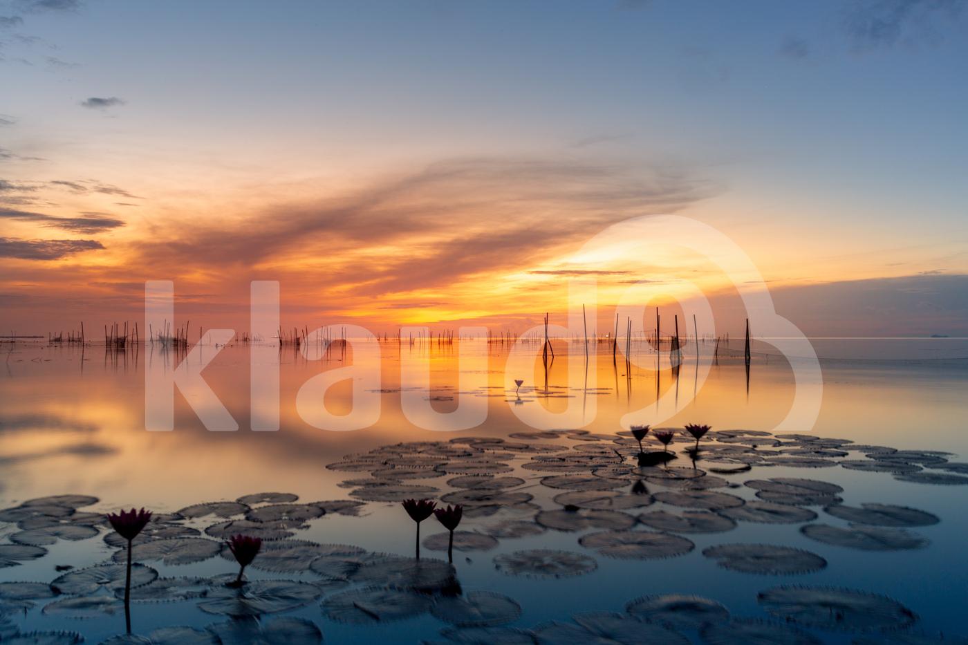 Sunrise qt the lake