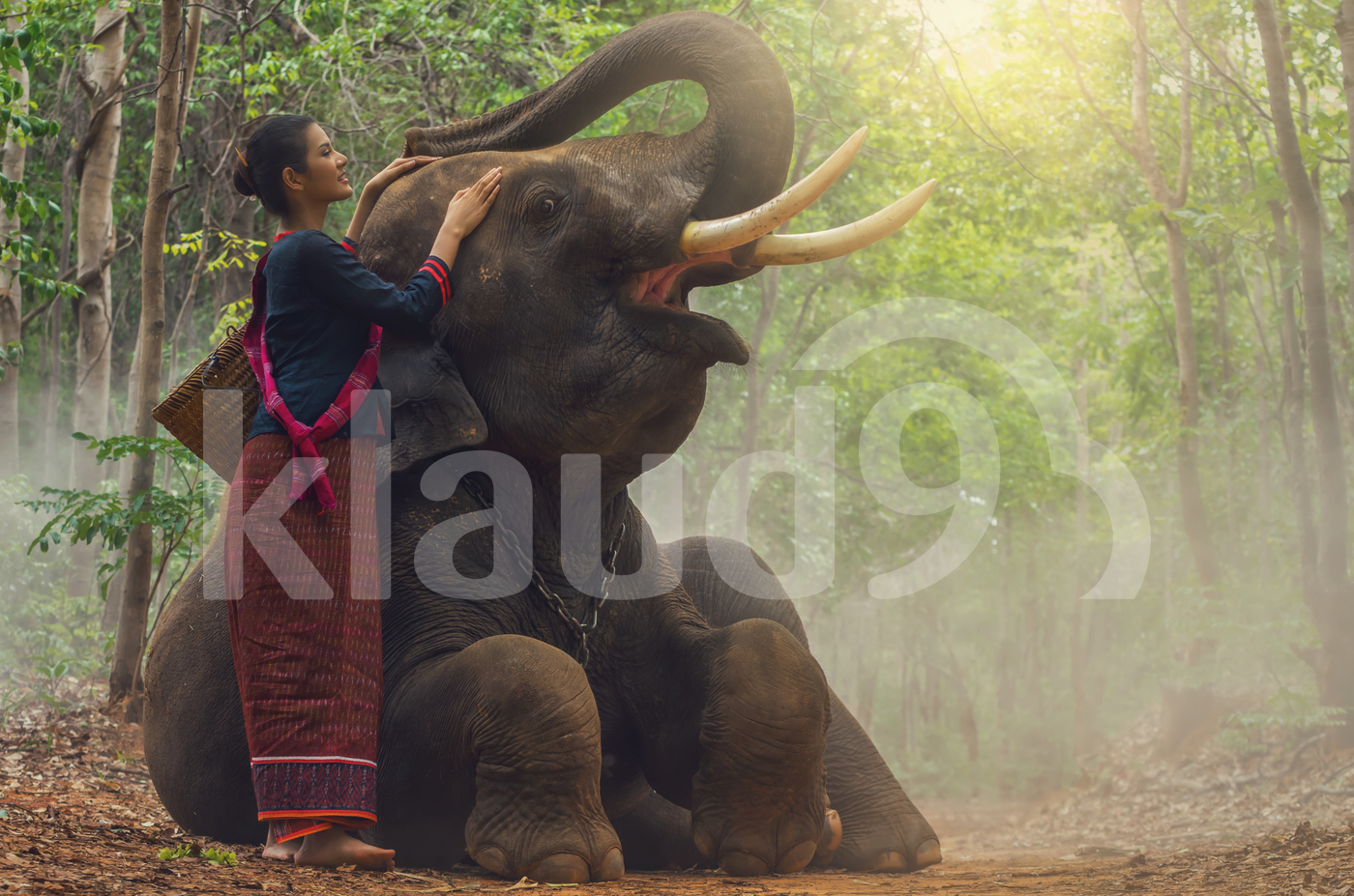 Beautiful model in traditional suit with elephant in the forest